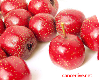Hawthorn Prevents Cancer